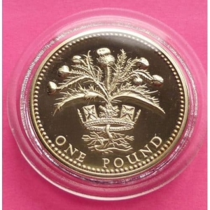 1989-ROYAL-MINT-SCOTTISH-THRISTLE-1-ONE-POUND-PROOF-COIN-MINT-CONDITION-330923968986