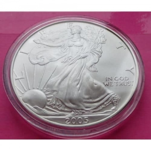 2005-SILVER-EAGLE-1-ONE-DOLLAR-COIN-LOVELY-COIN-ENCAPSULATED-331087981027