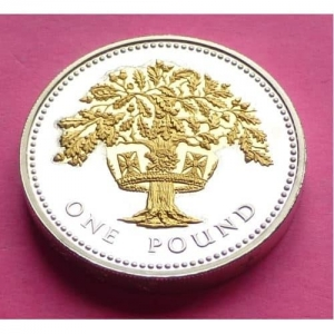 2008-ROYAL-MINT-SILVER-PROOF-ENGLISH-OAK-1-ONE-POUND-PROOF-COIN-COA-231181739839
