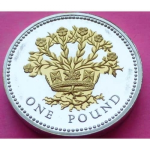 2008-ROYAL-MINT-SILVER-PROOF-IRISH-FLAX-1-ONE-POUND-PROOF-COIN-COA-331154229675