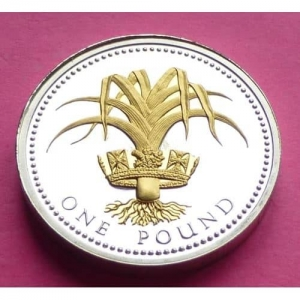 2008-ROYAL-MINT-SILVER-PROOF-WELSH-LEEK-1-ONE-POUND-PROOF-COIN-COA-231181743192