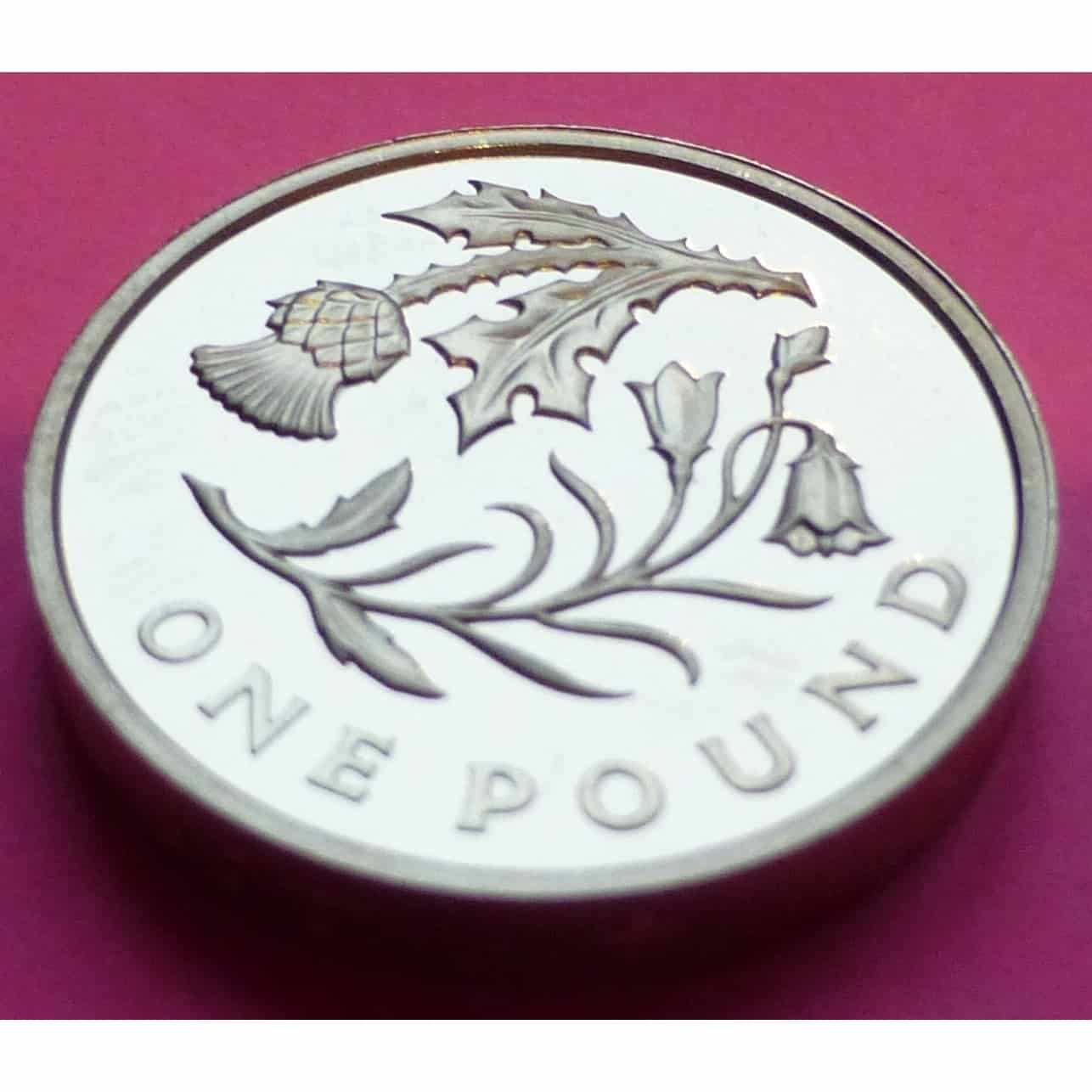 2014 Royal Floral Emblem Of Scotland 1 One Pound Proof Coin Mint