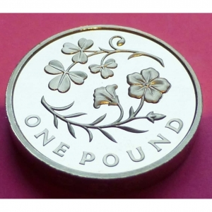 2014-ROYAL-FLORAL-EMBLEMS-OF-NORTHERN-IRELAND-1-PROOF-COIN-MINT-CONDITION-331105880092