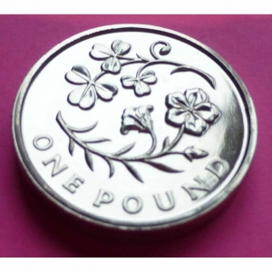 2014-ROYAL-MINT-FLORAL-EMBLEMS-OF-NORTHERN-IRELAND-1-ONE-POUND-BU-COIN-231135093468